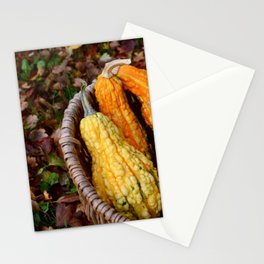 Basket of gourds Stationery Cards