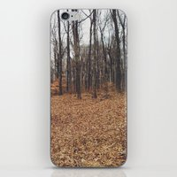 indiana iPhone & iPod Skins featuring Indiana Forest by Kurt Rahn