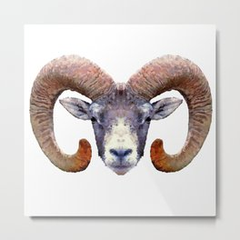 Aries Ram Metal Print