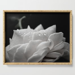 Floral Nature Photography - Delicate Rose with Water Droplets - Black and White Serving Tray