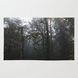 FOREST FOG Rug