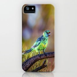Mallee Ringneck Parrot iPhone Case
