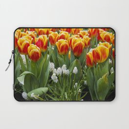 Red and Yellow Stripes Tulips with White Blossoms underneath in Amsterdam, Netherlands Laptop Sleeve