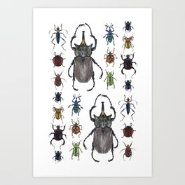 Insect collection (color) Art Print