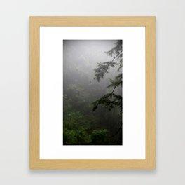 (#141) Misty Forest Framed Art Print