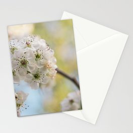 Pear Blossoms in spring. Stationery Cards