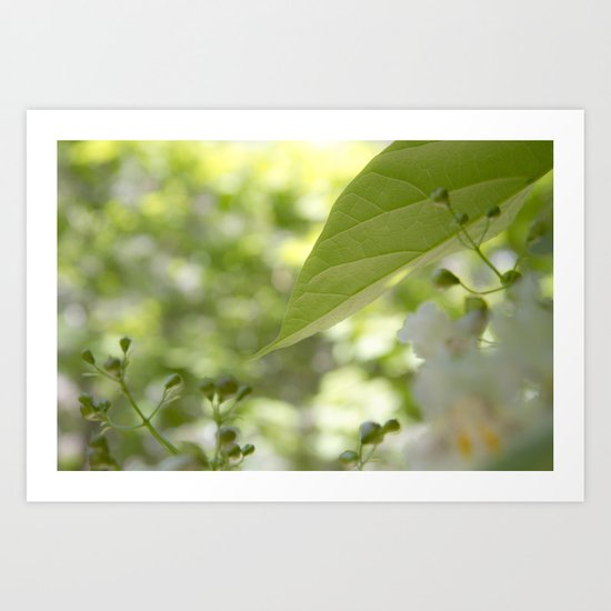 green moments Art Print