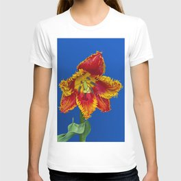 Flower tulip terry in spring T-shirt