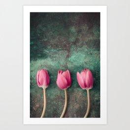 Three Red Tulips Art Print