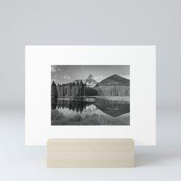 Landshapes - Manti La Sal National Forest Mini Art Print