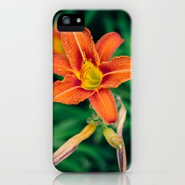 Blooming Tiger Lily Flowers iPhone Case