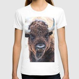 American Bison  -  A Living National Treasure T-shirt