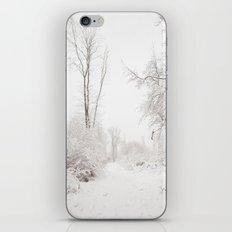 Joyeuses Fêtes! iPhone & iPod Skin