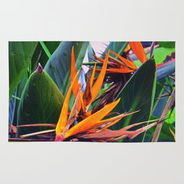 Tropical Flowers Rug