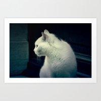 Mystic cat Art Print