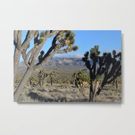 """""""As Far as You Can See"""" Metal Print"""