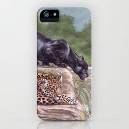 Jaguars Painting iPhone Case