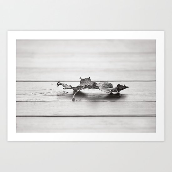 Leaf in the Fall Art Print