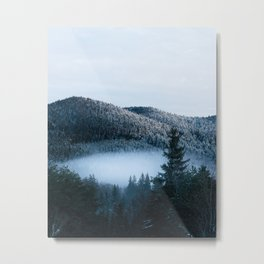 Mysterious fog trapped in winter spruce forest Metal Print