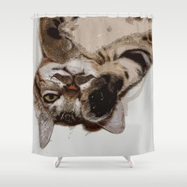 I Mustache You a Question Shower Curtain