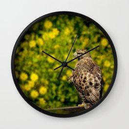 Hawk in sunflowers Wall Clock