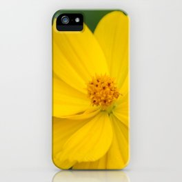 Coreopsis 2 iPhone Case