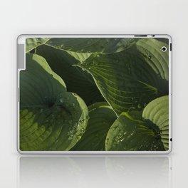 Hosta After a Rain Laptop & iPad Skin