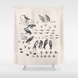 Black birds and their Footprints Shower Curtain