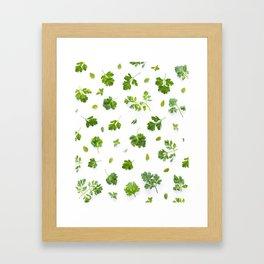 Herbs on White - Portrait Framed Art Print