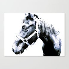El Caballo Amistoso Canvas Print