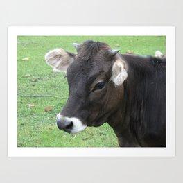 #406 7 2 13 nature cow hobby farm bitterroot mt Art Print