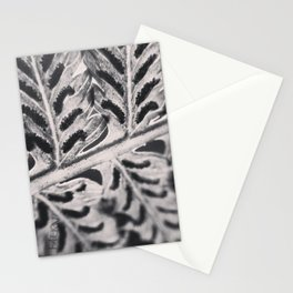 Black and White image of the back of a fern leaf Stationery Cards