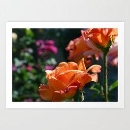 Flowers_3 Art Print