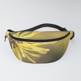 witch hazel blossom Fanny Pack