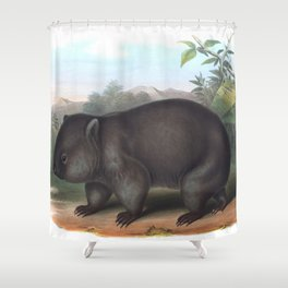 Wombat in the nature of Australia Shower Curtain