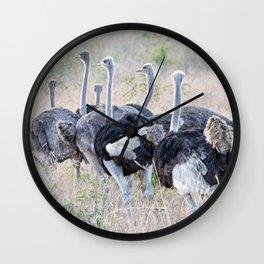 Ostrich Wall Clock