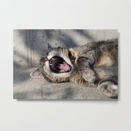 CAT - YAWNING - PHOTOGRAPHY - ANIMALS - CATS Metal Print