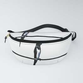 Birds On Wires Planning The ETD Fanny Pack