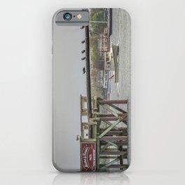 Cormorants on the Greasy Pole iPhone Case