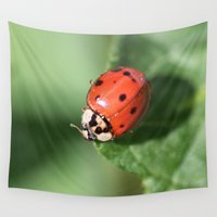 ladybug Wall Tapestries featuring Ladybug, ladybug... by IowaShots