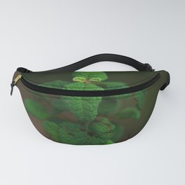 One little thing Fanny Pack