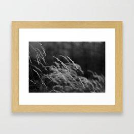 For my Grandmother Framed Art Print
