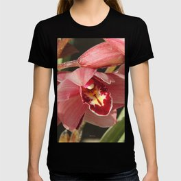 One Orchid on a Line T-shirt