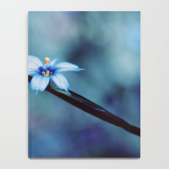Blue on blue Flower Photography, Symphony in Blue Notebook