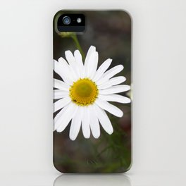 One Daisy iPhone Case