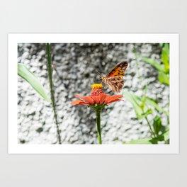 Butterfree Art Print