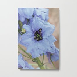 Vintage Blue Flowers Metal Print