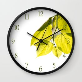 Twig with young green leaves on white Wall Clock