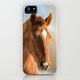 Brown Horse Winter Sky iPhone Case