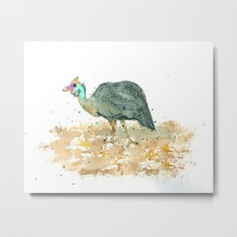 Blue helmeted Guinea fowl Metal Print